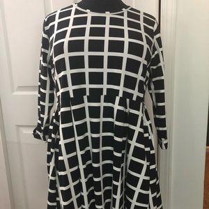 Plus Size Long Sleeved Dress